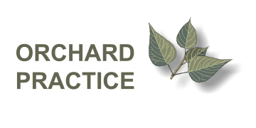 The Orchard Practice, Dartford logo