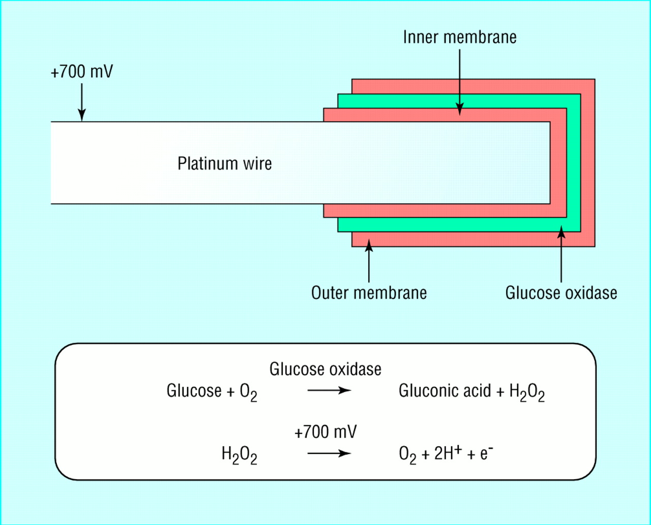 an analysis of how the concentration of enzymes controls the breakdown of hydrogen peroxide Hydrogen peroxide in the human body  the latter also showing a higher gsh concentration compared to controls,  international journal of food sciences and.
