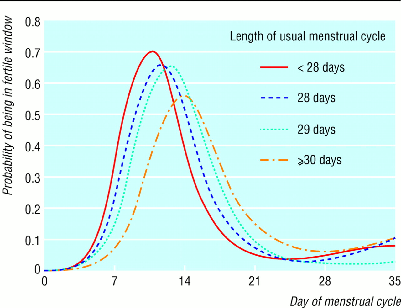 Fertile period in the menstrual cycle 53