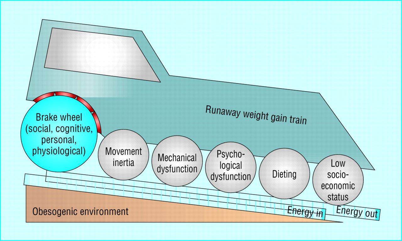 the runaway weight gain train too many accelerators not enough