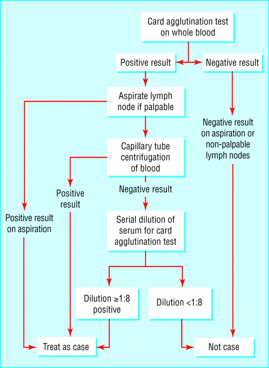 example blood test active b12 test pdf