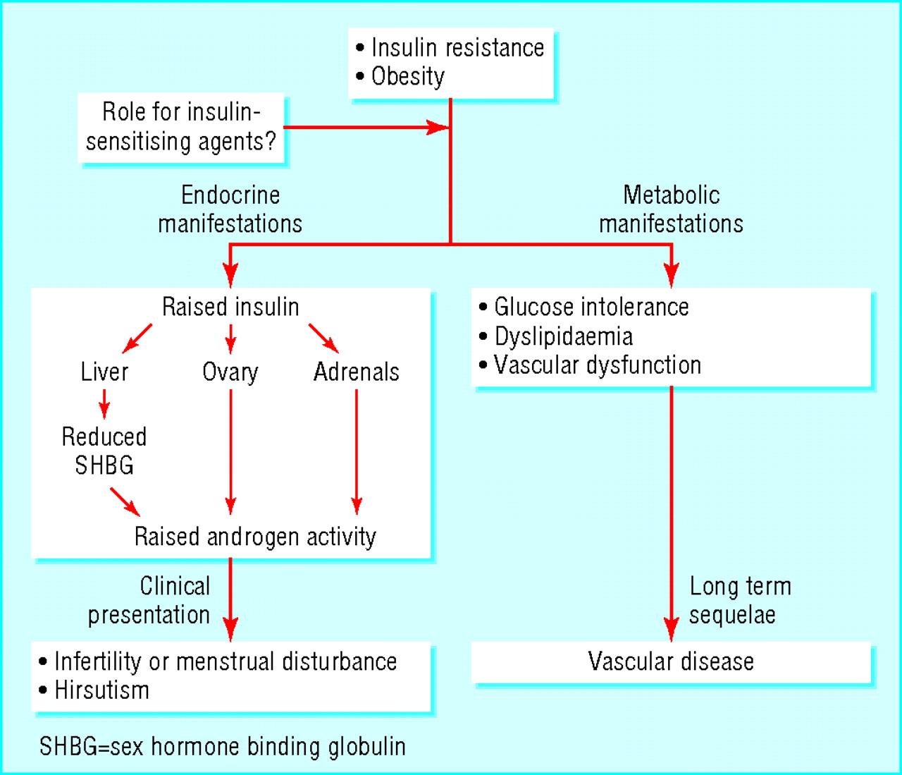 High sex hormone binding globulin photos 65