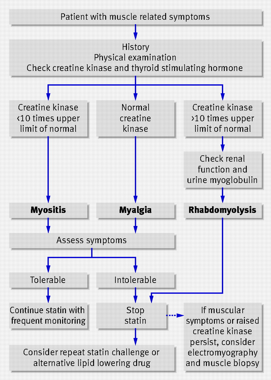 Statin induced myopathy | The BMJ