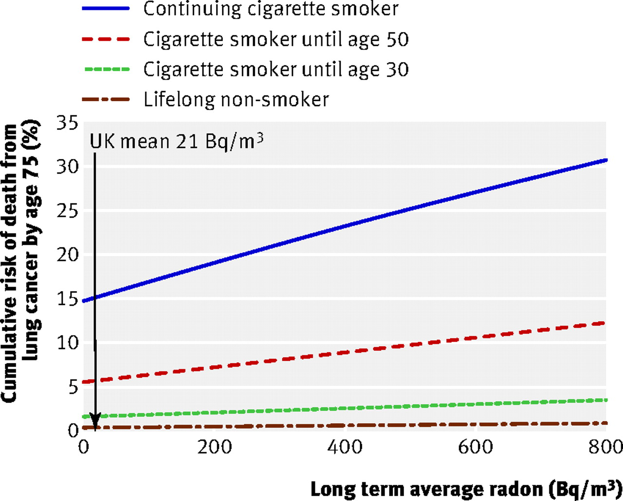 the link between radon gas and lung cancer The radon-induced lung cancer risks varying from 103  excellent correlation was observed between the radon concentration and lung cancer cases per year per million people for different brands of tobacco the aims of the present work were to evaluate the  the annual effective dose for smoker lung from radon gas inhalation, el (msv year.