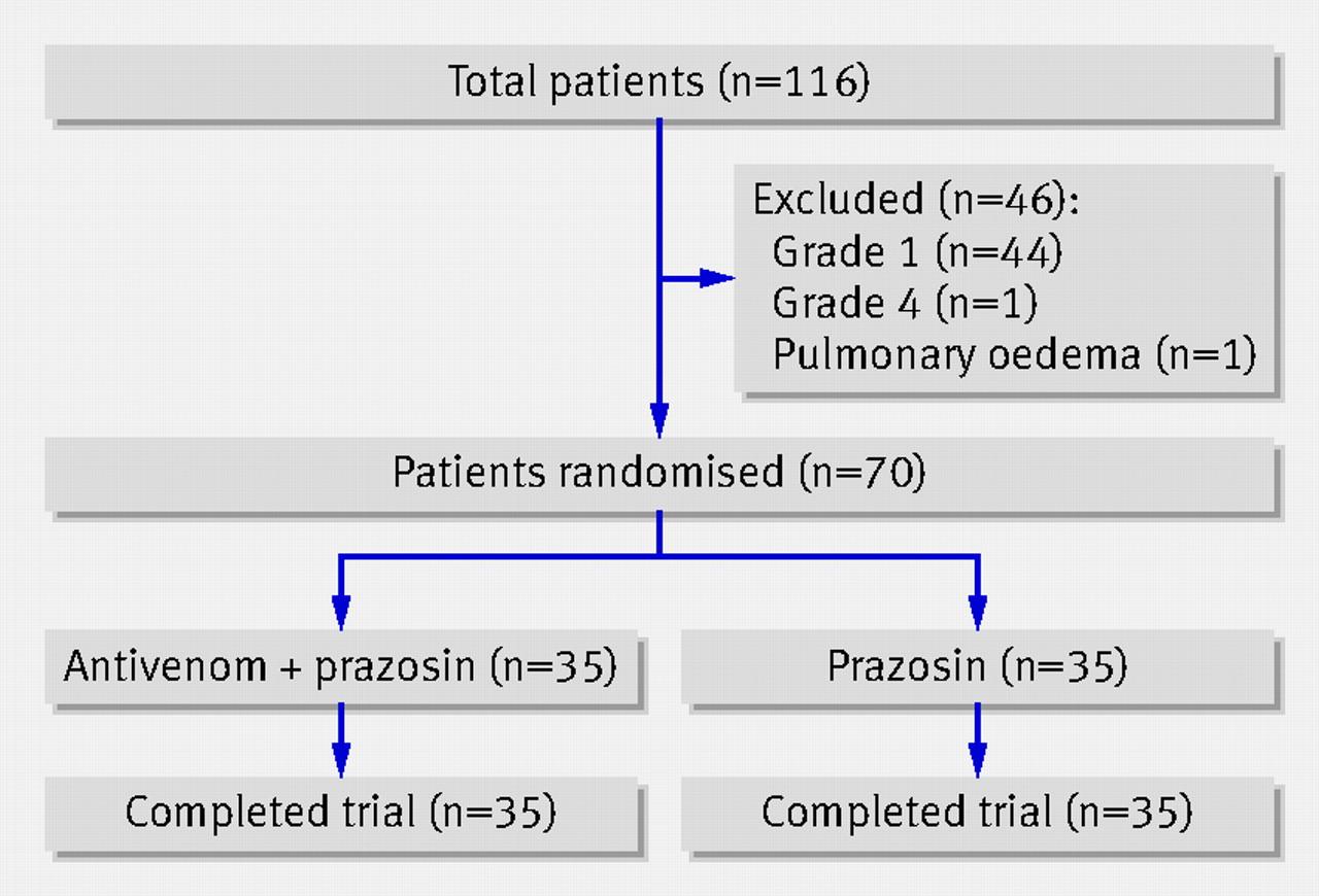 Efficacy and safety of scorpion antivenom plus prazosin compared