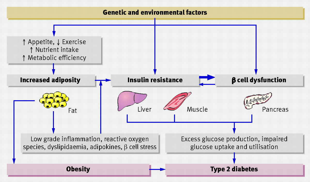 The challenge of managing coexistent type 2 diabetes and..