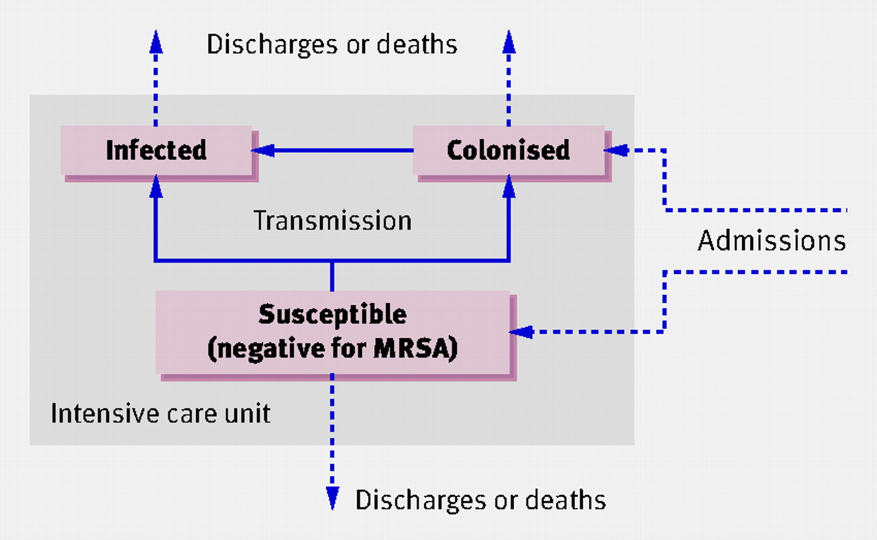 transmission of mrsa Guide to the elimination of methicillin-resistant staphylococcus aureus (mrsa) transmission in hospital settings an apic guide march 2007 apic's mission is to improve health and patient safety by reducing risks of infection.