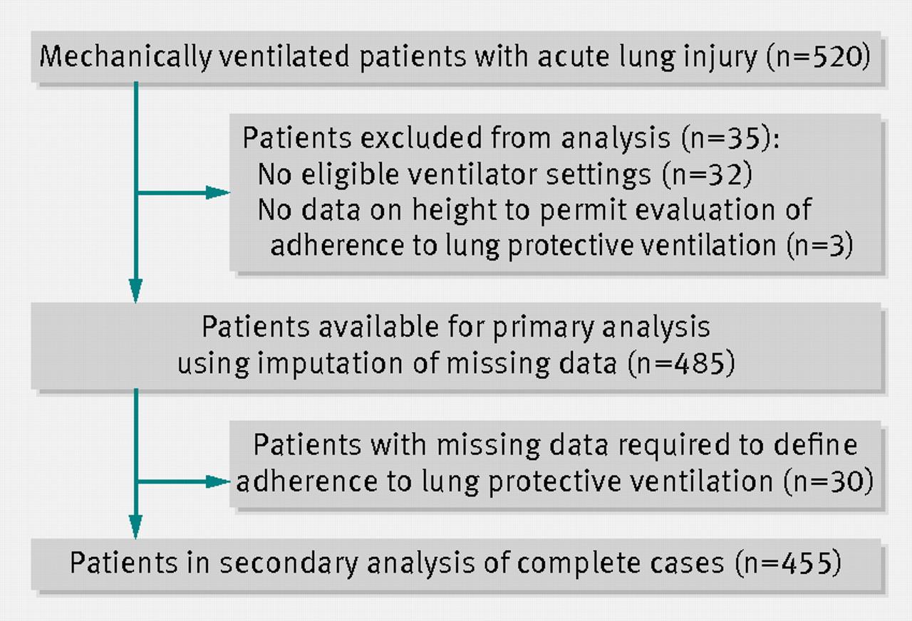 Lung Ventilation - Virginia Commonwealth University