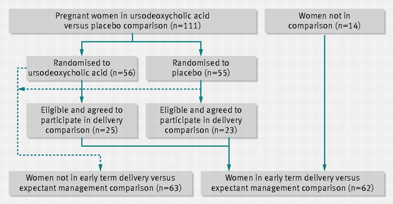 Ursodeoxycholic Acid For Bile Reflux