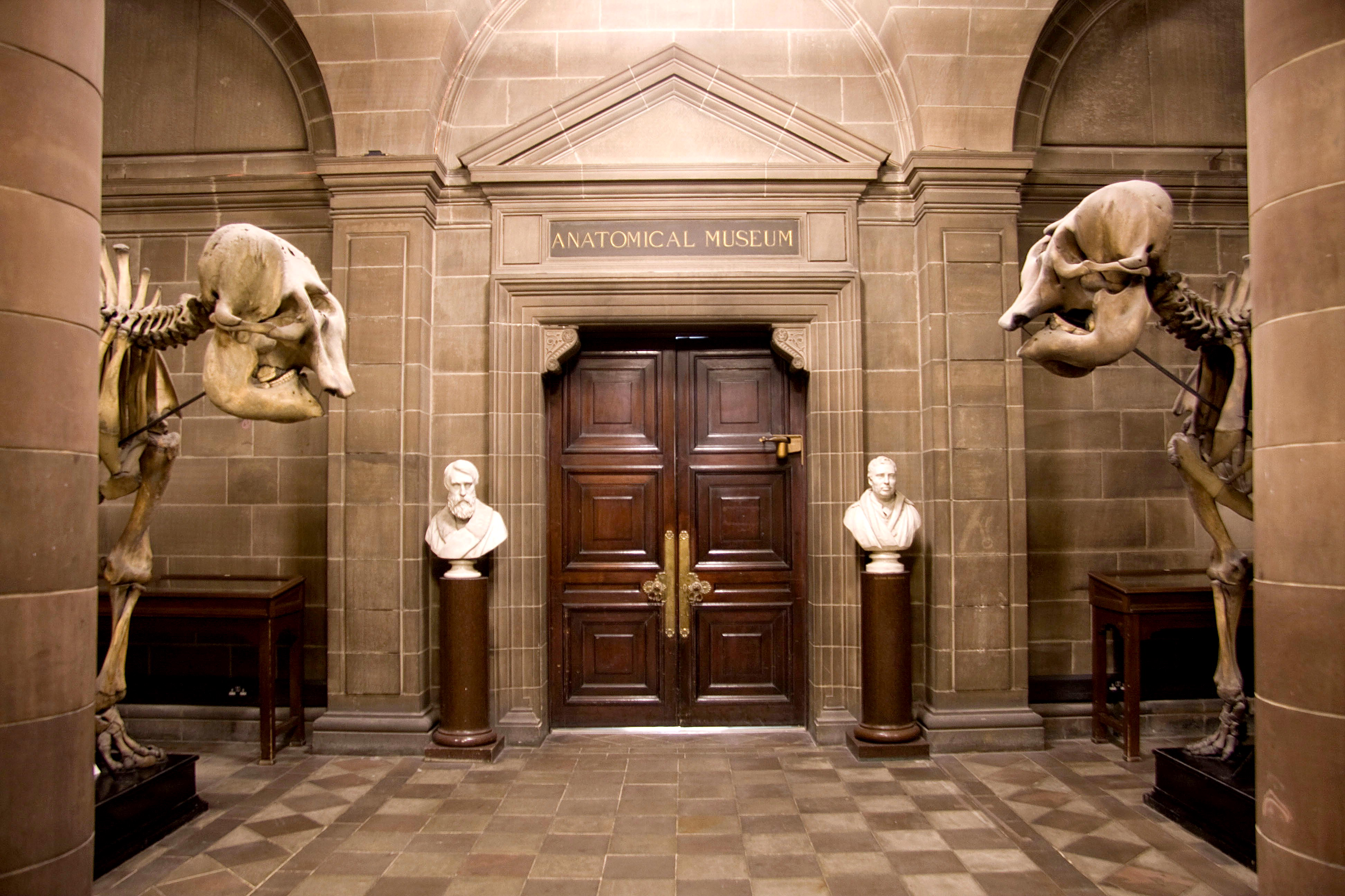 Opening Of The Anatomical Museum University Of Edinburgh The Bmj