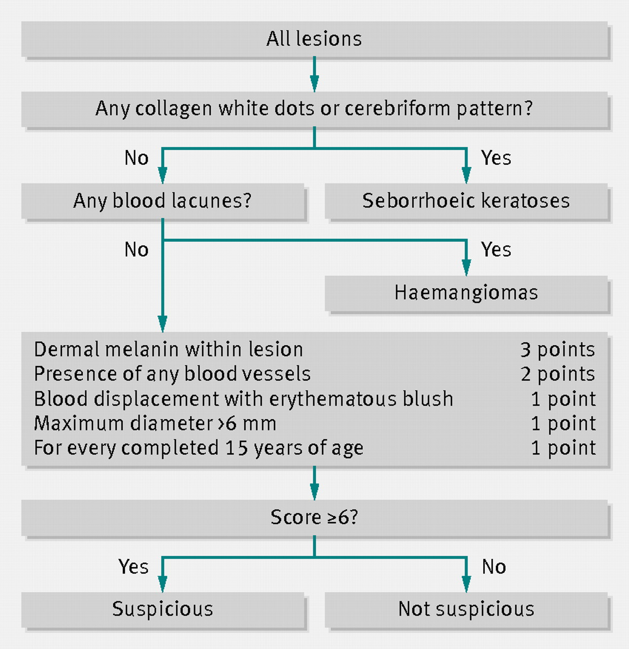 Effect Of Adding A Diagnostic Aid To Best Practice To Manage Suspicious Pigmented Lesions In Primary Care Randomised Controlled Trial The Bmj