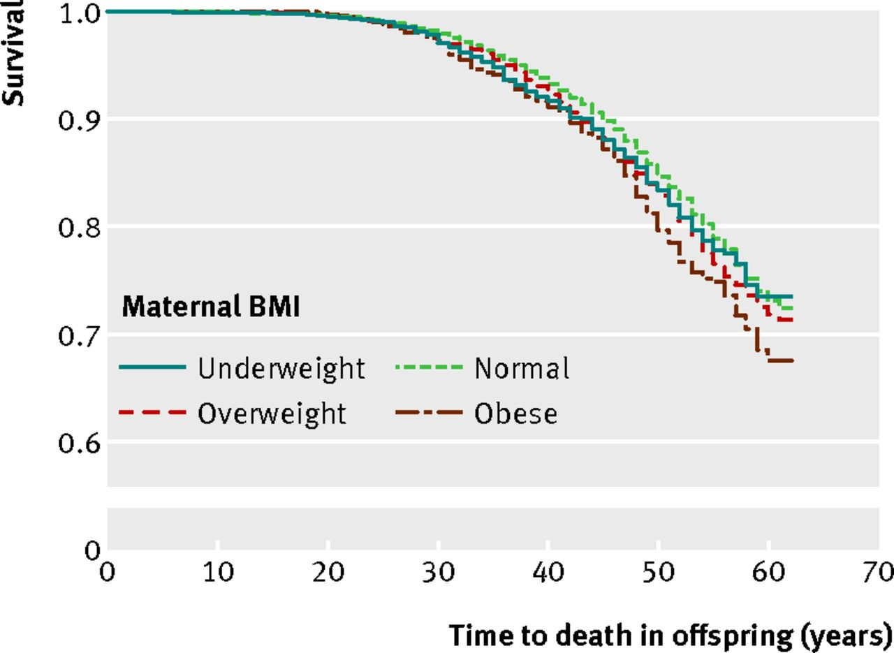 Maternal obesity during pregnancy and premature mortality