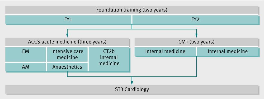 Acute care common stem (acute medicine) versus core medical