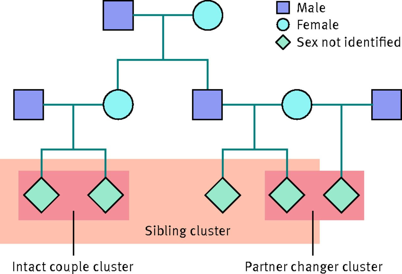 Family Pedigree Illustrating Example Of Types Of Clusters (intact Couple,  Partner Changer, And Sibling) Used To Assess Familial Clustering Of  Postpartum ...
