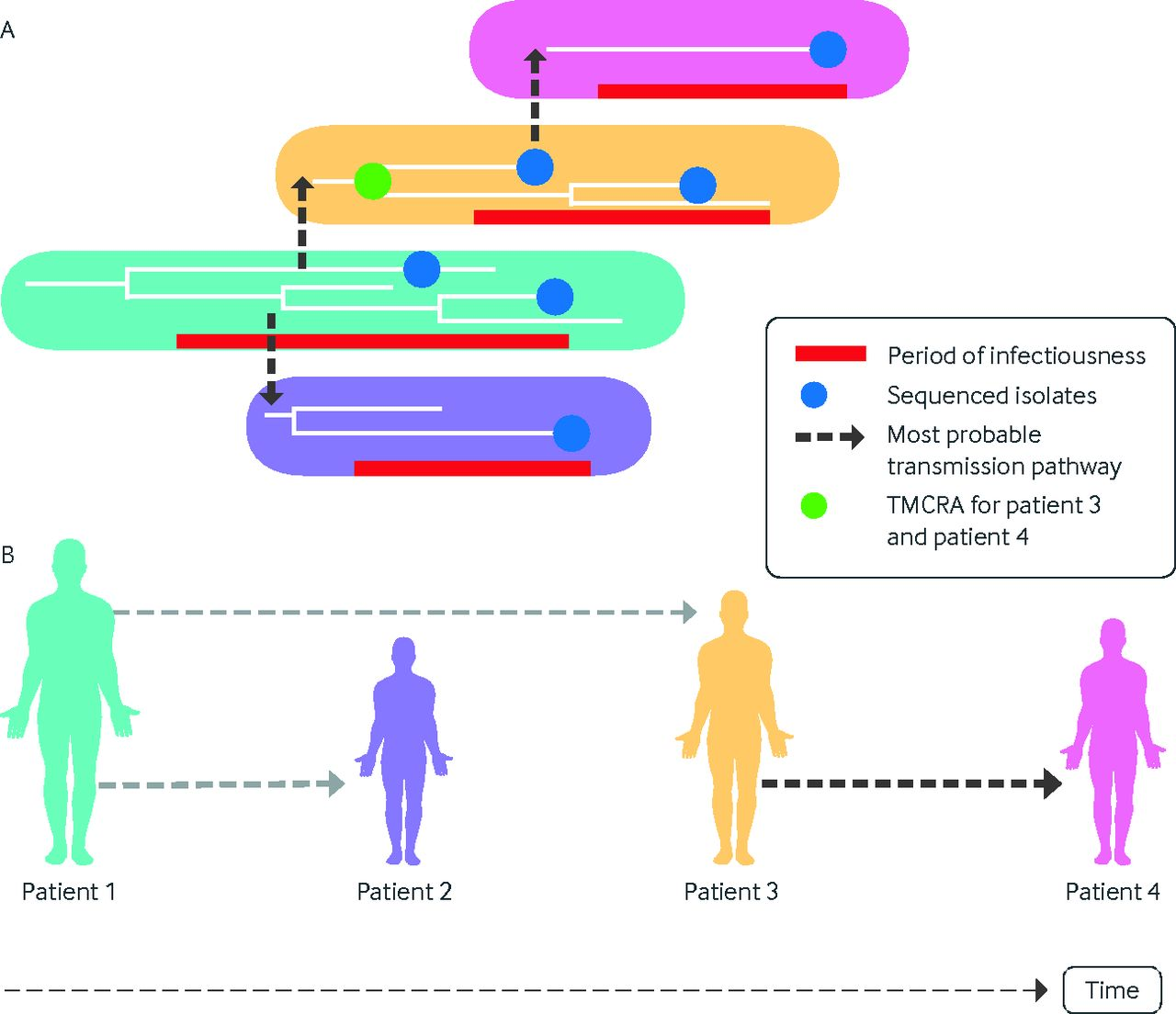 The role of pathogen genomics in assessing disease