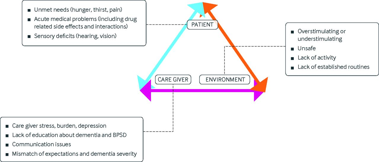 describe a range of causes of dementia syndrome