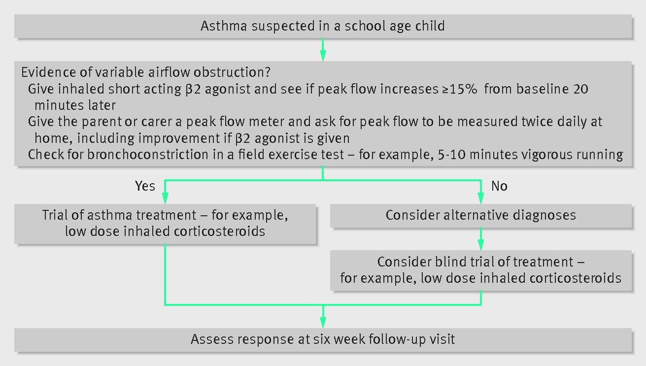 Diagnosis And Management Of Asthma In Children The Bmj