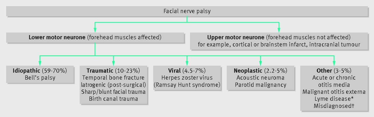 Assessment And Management Of Facial Nerve Palsy The Bmj
