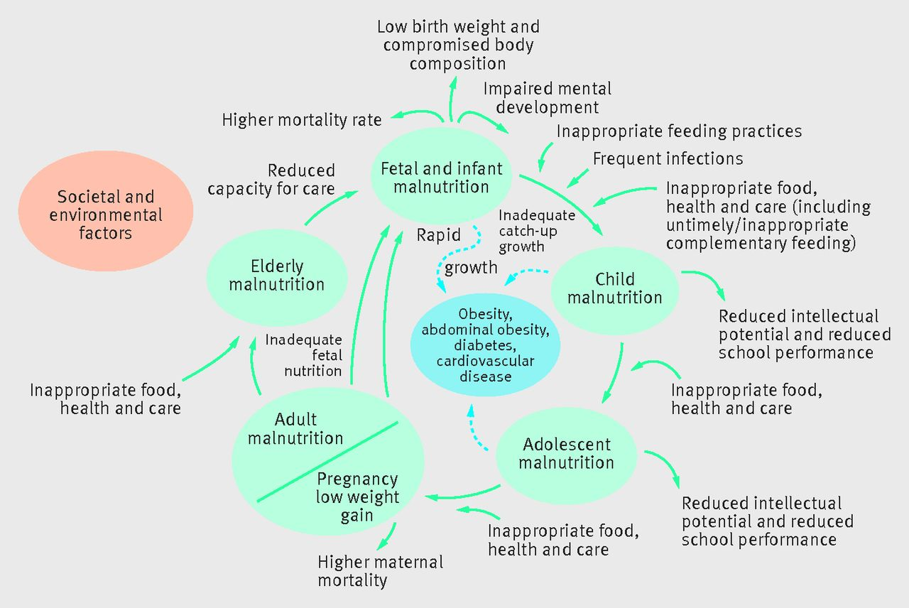 how does nutrition influence growth of child