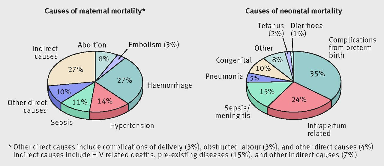 Maternal Mortality in Nepal  Addressing the Issue   Inquiries Journal SlideShare