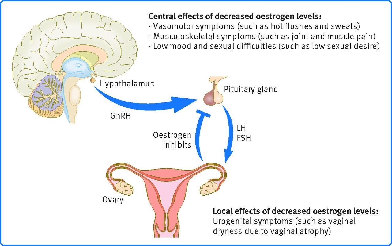 Nice guidelines menopause