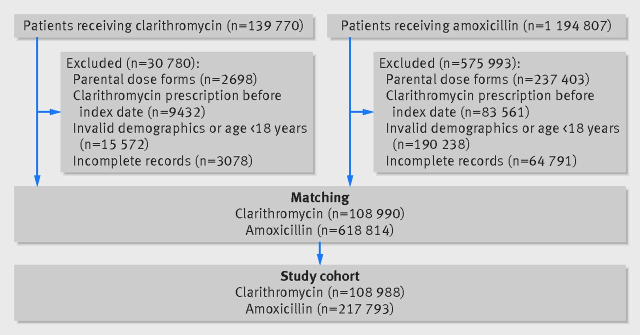 cardiovascular outcomes associated with use of clarithromycin