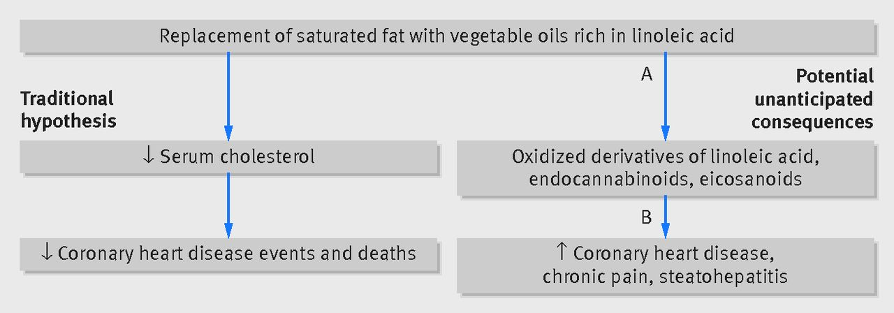 Cardiovascular Disease Epidemiology   Circulation