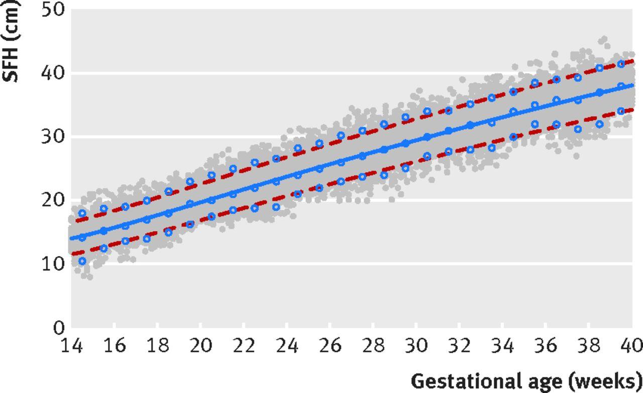 International standards for symphysis-fundal height based on