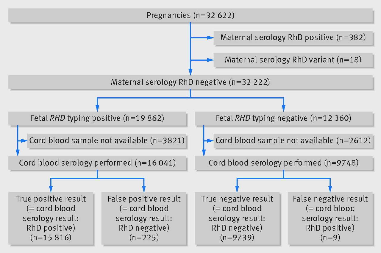 sensitivity of fetal rhd screening for safe guidance of targeted