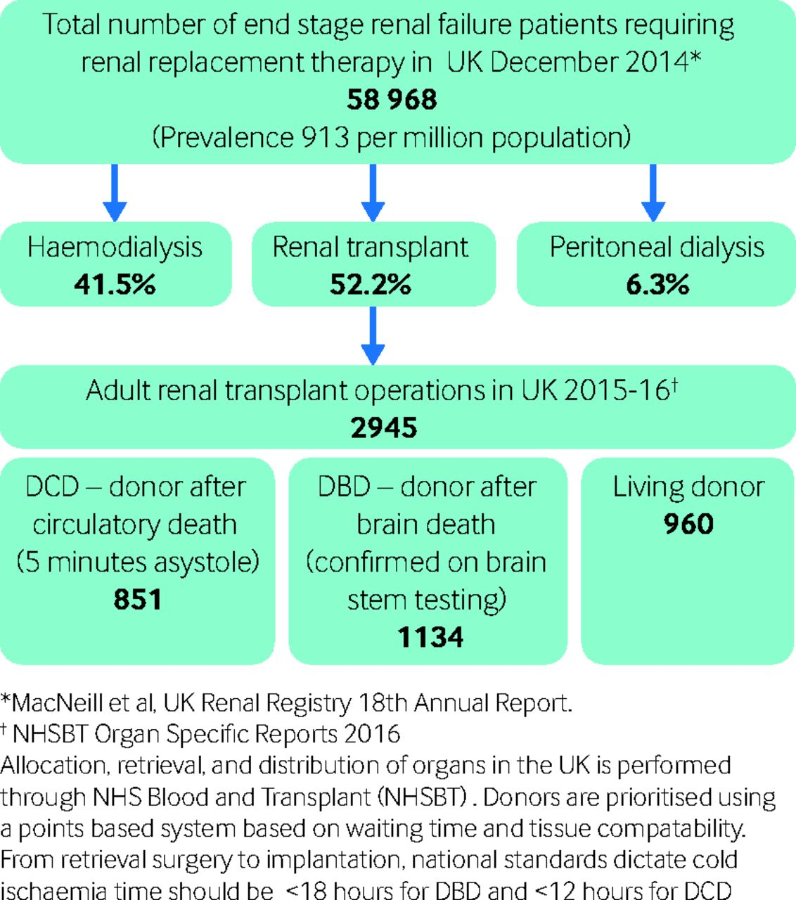 renal transplantation in adults the bmj