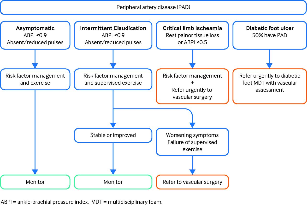 Peripheral Artery Disease The Bmj