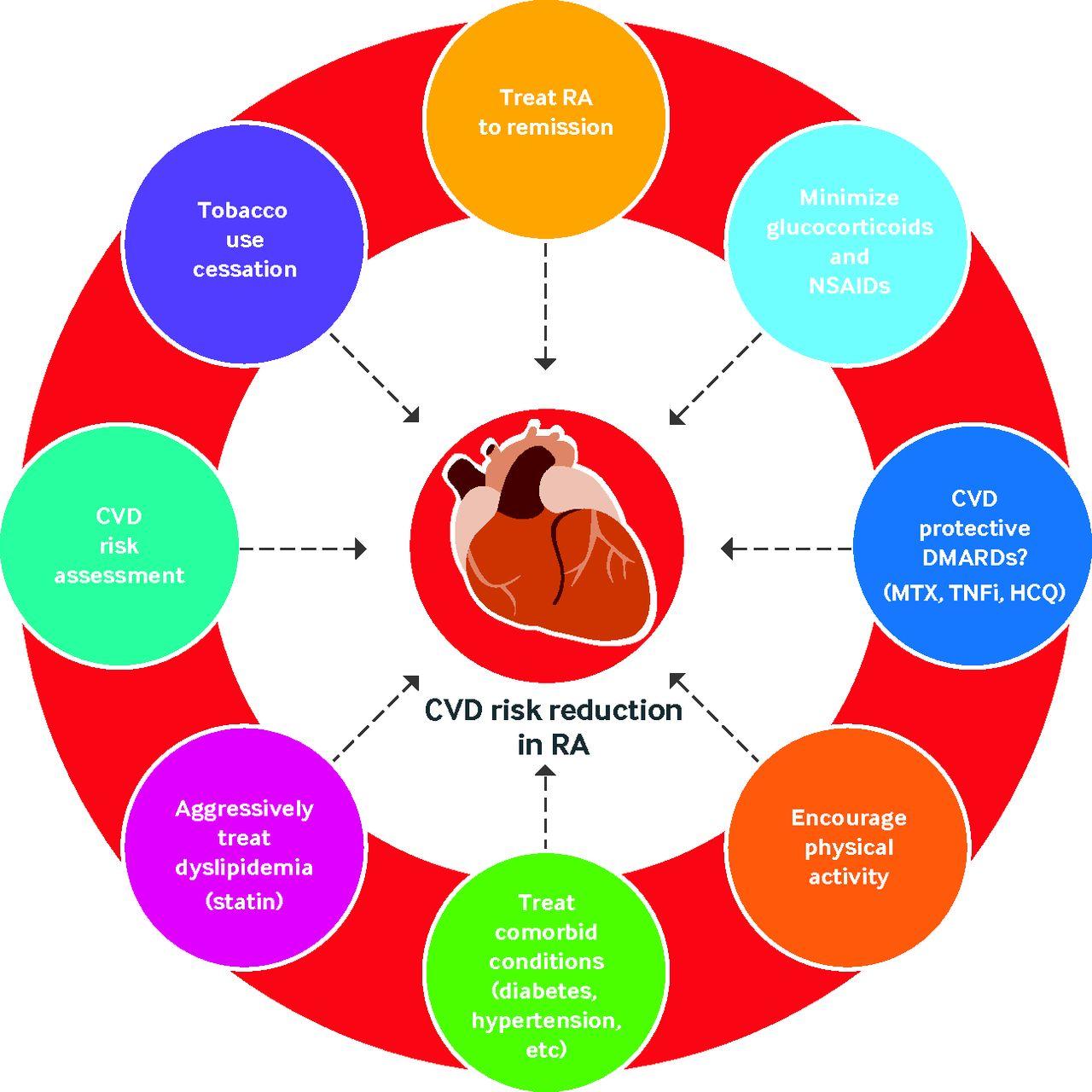Increased Cardiovascular Risk In Rheumatoid Arthritis Mechanisms
