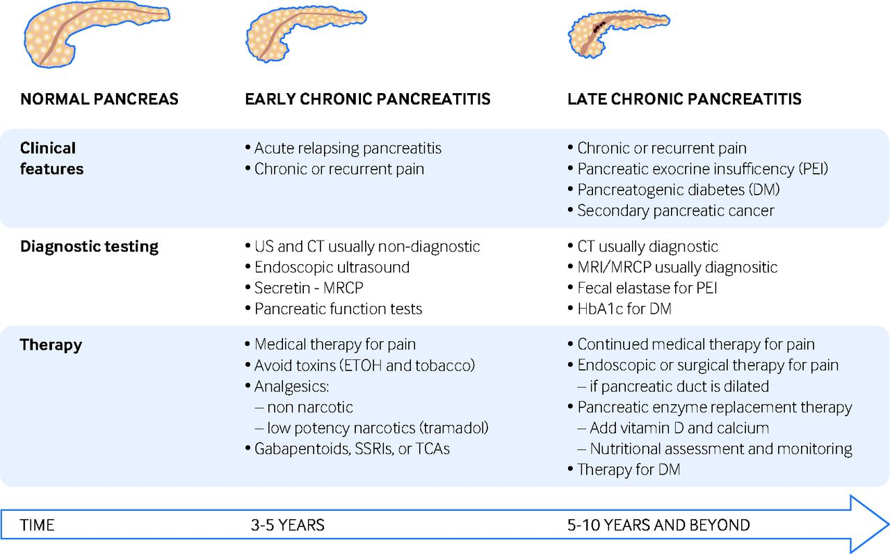 Pancreatitis Treatment: Dealing With Acute, Chronic, and Severe Pancreatitis