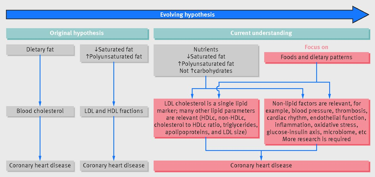 dietary fat and cardiometabolic health  evidence