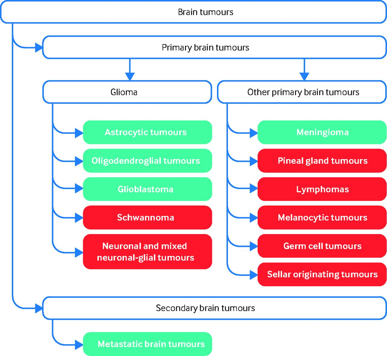 Primary and metastatic brain tumours in adults: summary of NICE