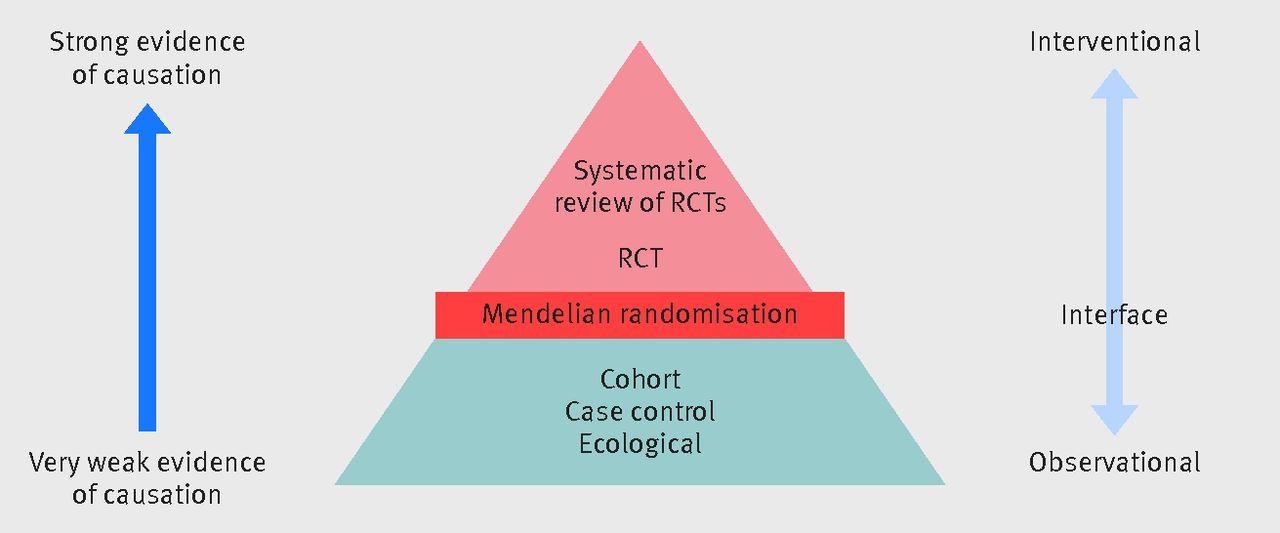 Reading Mendelian randomisation studies: a guide, glossary
