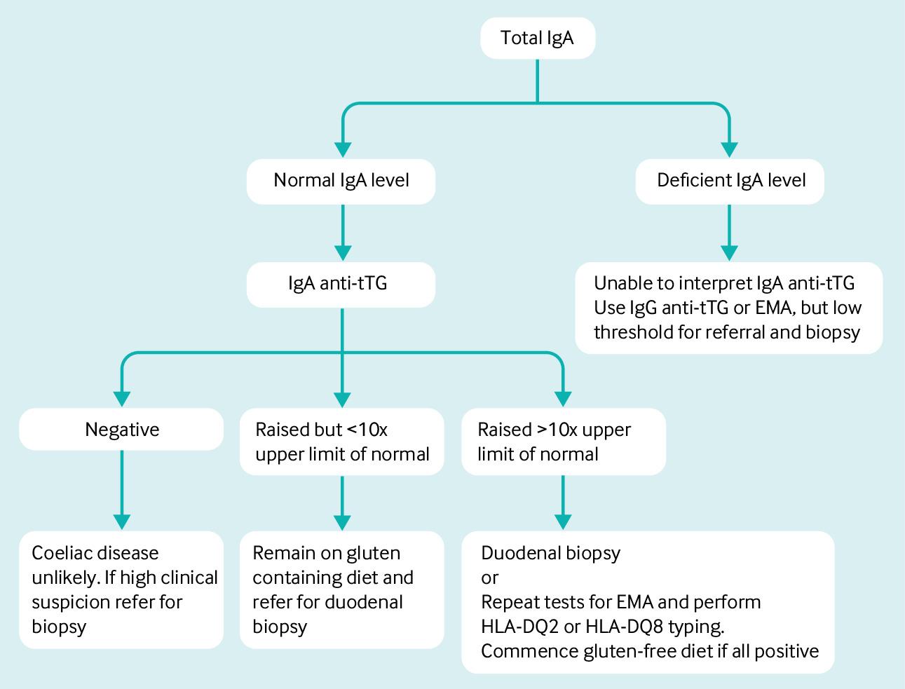 Celiac Disease Stool Test - Stools
