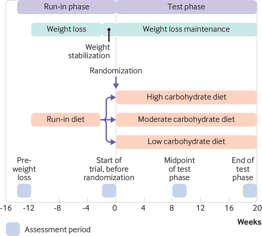 effects of a low carbohydrate diet on energy expenditure during