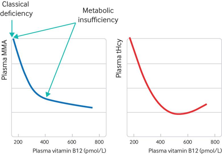Investigating vitamin B12 deficiency   The BMJ