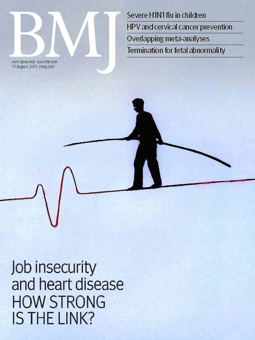 Maternal obesity and heart disease in the offspring | The BMJ