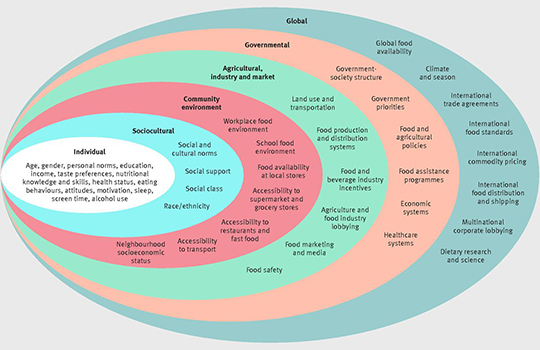 Role Of Government Policy In Nutrition Barriers To And