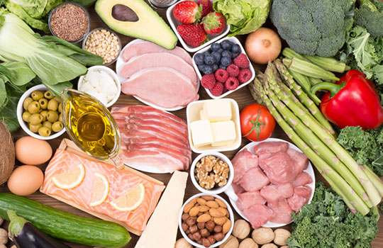 atkins diet research paper