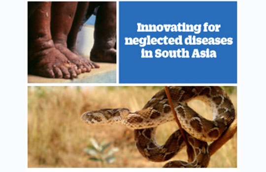 The timing is right to end snakebite deaths in South Asia