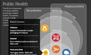 Infographic: Manifesto positions