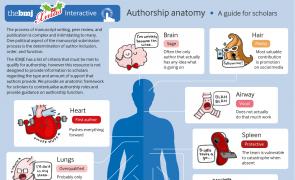 Infographic - Authorship anatomy