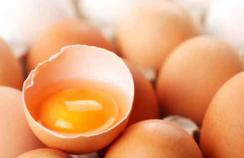 Investigating an eggs allergy