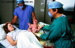 Genetic contribution to postpartum haemorrhage