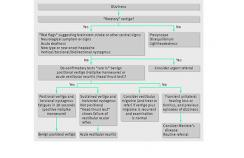 Diagnostic strategy for patients presenting with acute vertigo