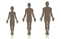 Trajectory of body shape in early and middle life