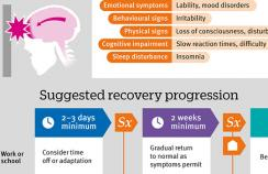 Infographic showing the suggested recovery progression for concussion